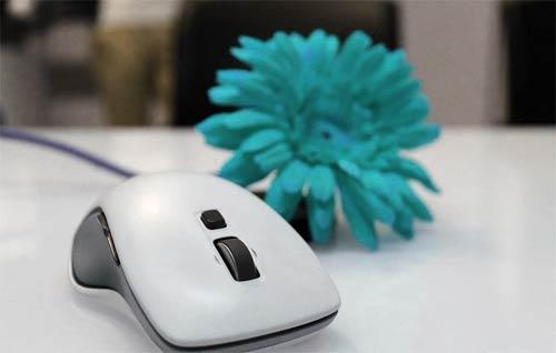 exemple de souris filaire